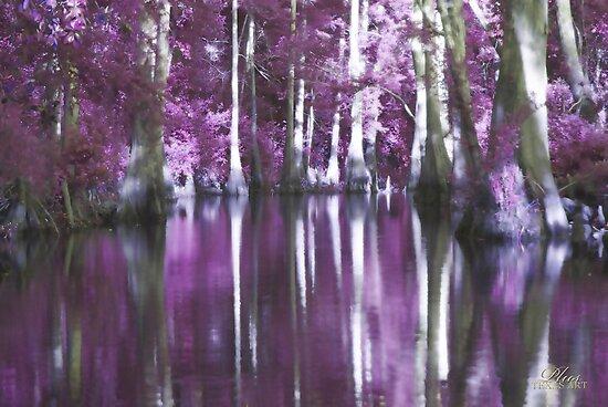 Shady Purple Bayou by Theresa Tunstall