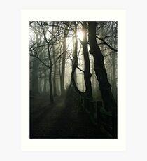 Eery Woodland in Surrey Art Print