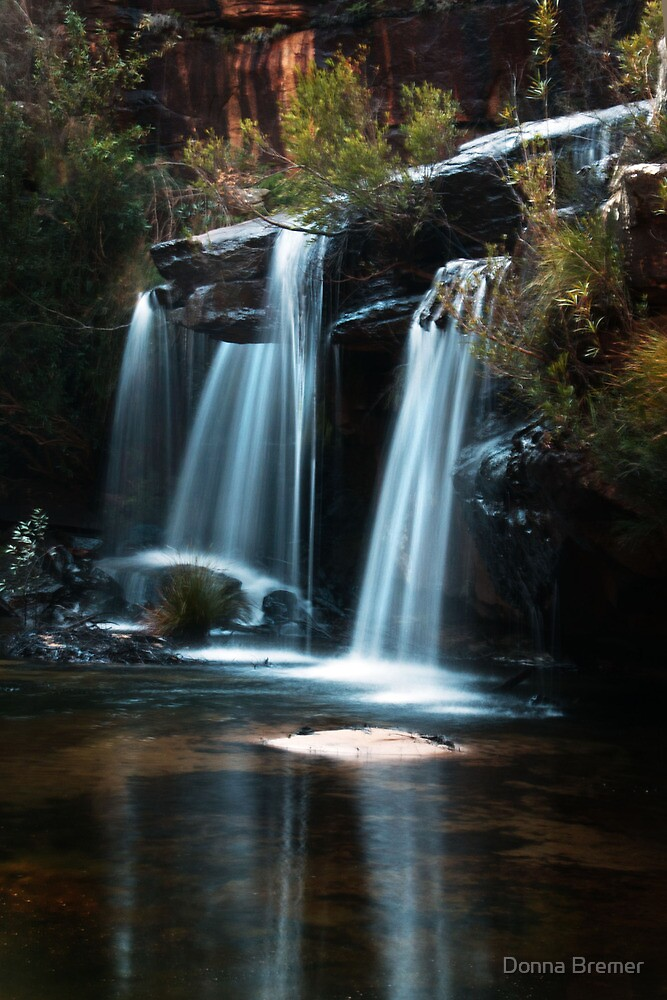 Winifred Falls Royal NP NSW by Donna Bremer