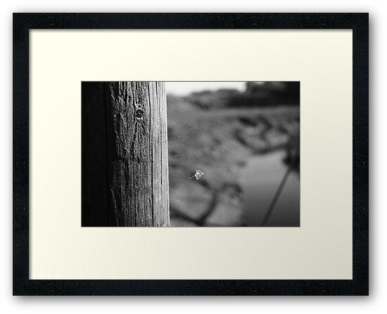 Skipool Creek (4) by Clive Sluter