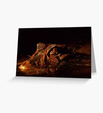 Cayman in the night Greeting Card