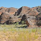 Domes, Bungle Bungles, Purnululu National Park. by Margaret  Hyde