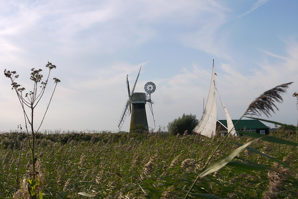 Norfolk Broads by kalwhite
