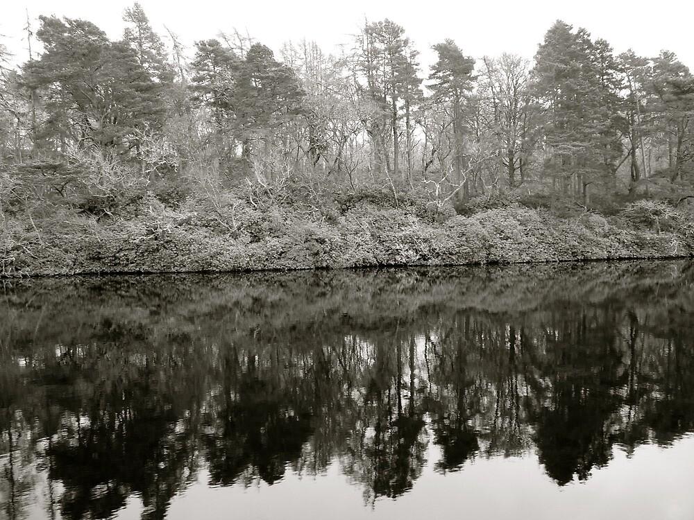 Loch Ness in Winter | Scotland by rubbish-art