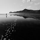 Kite Runner by meredithnz
