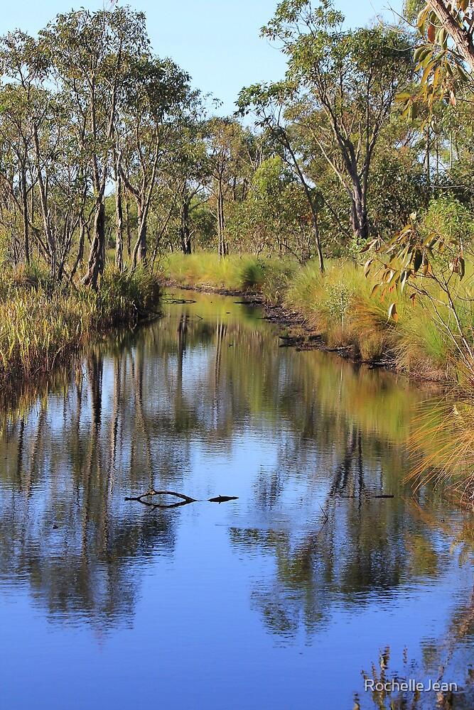 Pine Ridge Conservation Park B by RochelleJean