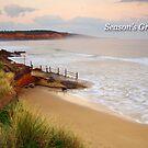 Anglesea Coastline by Darren Stones