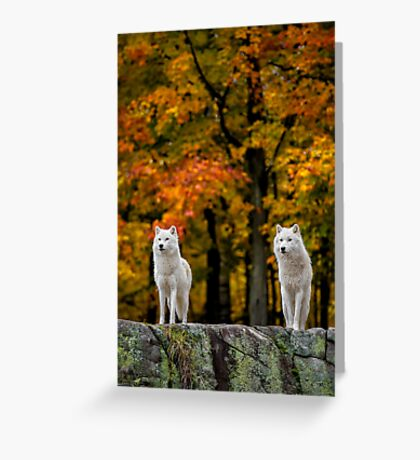 Above and beyond Greeting Card