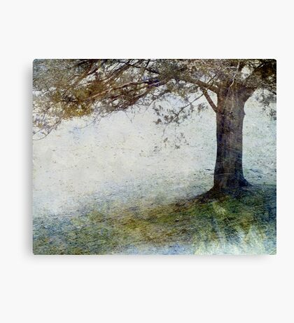 First Snow in Bethel Canvas Print