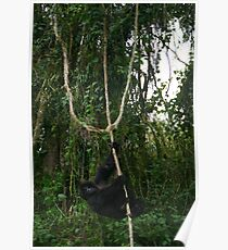 Hanging Around Poster