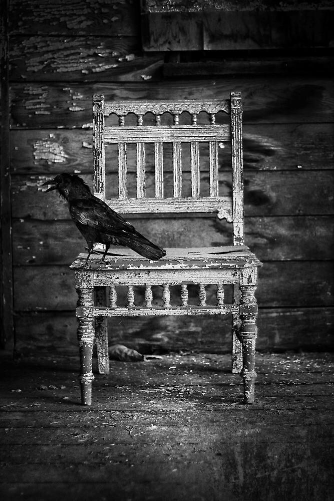Feathered Seat  by JerryCordeiro