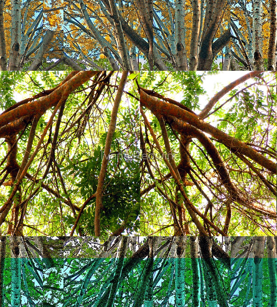Abstracted Composition With Trees and Branches by Ivana Redwine