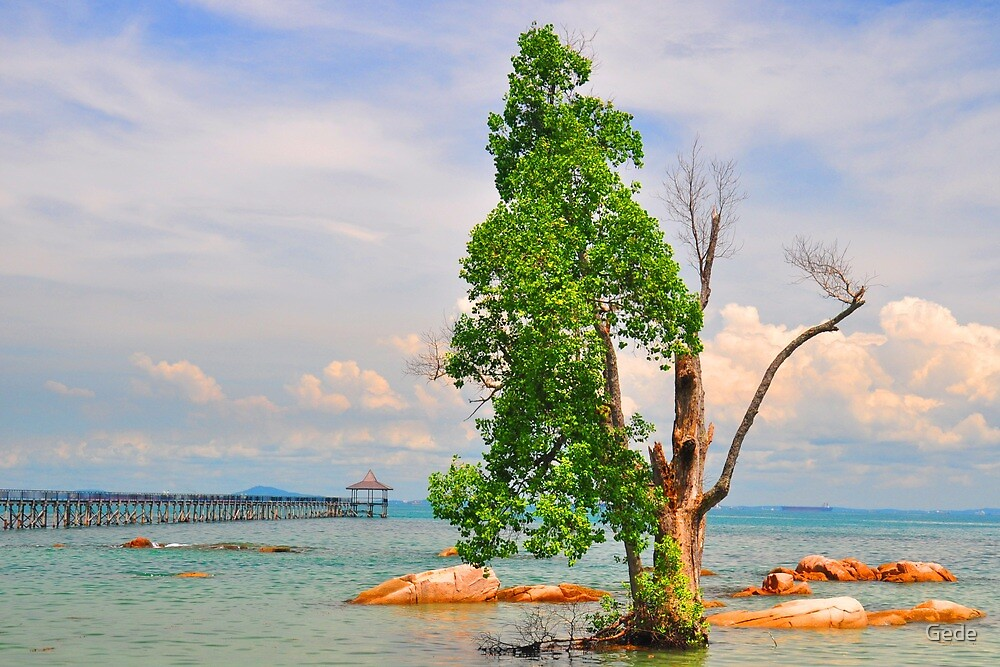 Turi Beach. by Gede