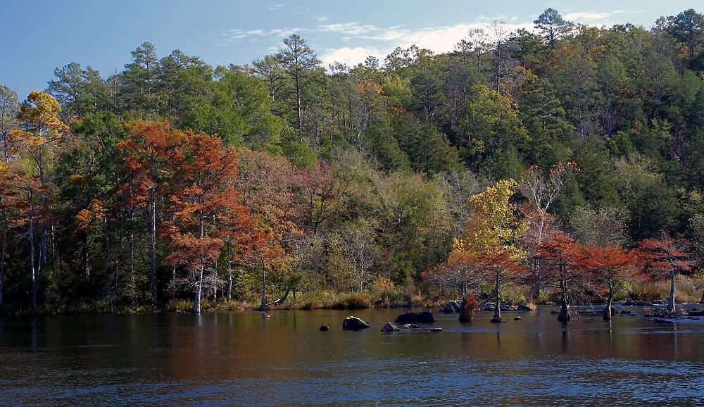 Mountain Fork Park by Carolyn  Fletcher