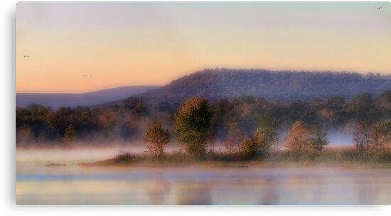 Arkansas River Dreams by Carolyn  Fletcher
