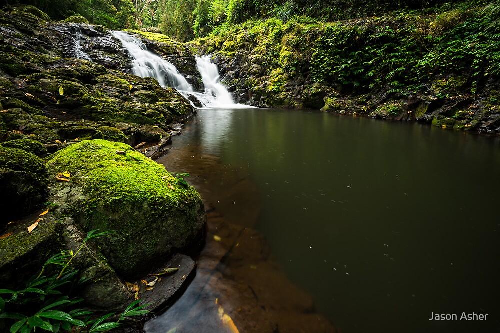 """Darragumai Falls"" ∞ Lamington National Park, QLD - Australia by Jason Asher"