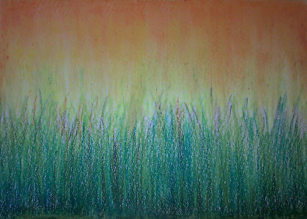 T 1206 Nature lustre by Suresh Saraswat