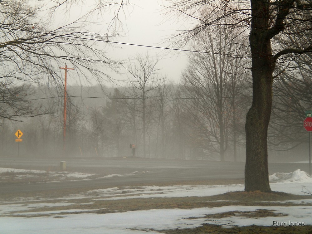 Foggy in Michigan by Michael Rudd