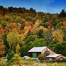 Fall scene at Lincoln Falls, PA by Penny Rinker