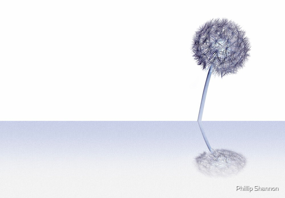 Dandelion Blue with reflection & Inverted by Phillip Shannon