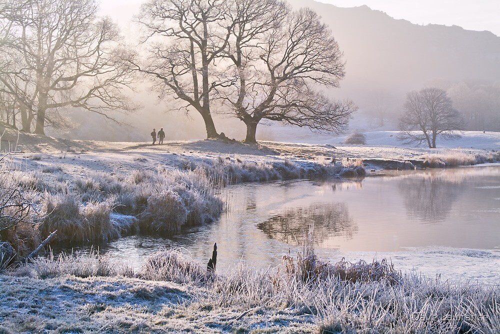 an essay on sunny day and cold and frosty morning Today: after a frosty morning, a largely sunny day follows, with any remaining snow showers across derbyshire soon easing however it will stay cold, with the brisk winds persisting.