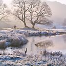 Frosty morning at the River Brathay - The Lake District by Dave Lawrance