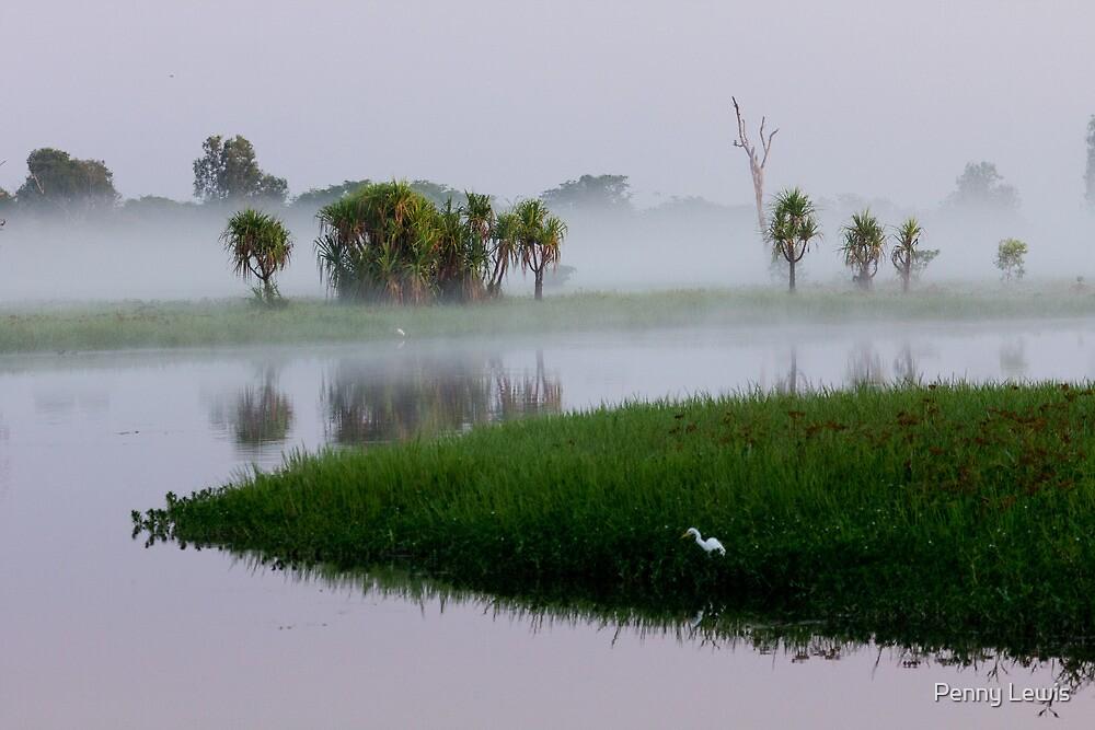 Misty Morning Kakadu by Penny Lewis