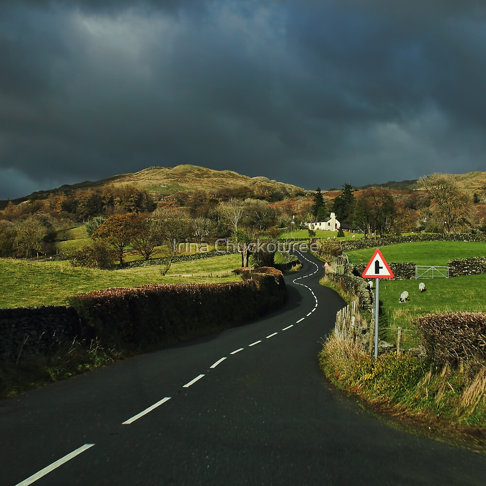 The Road to Wuthering Heights by Irina Chuckowree