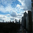 Central Park West, Central Park View, New York City by lenspiro