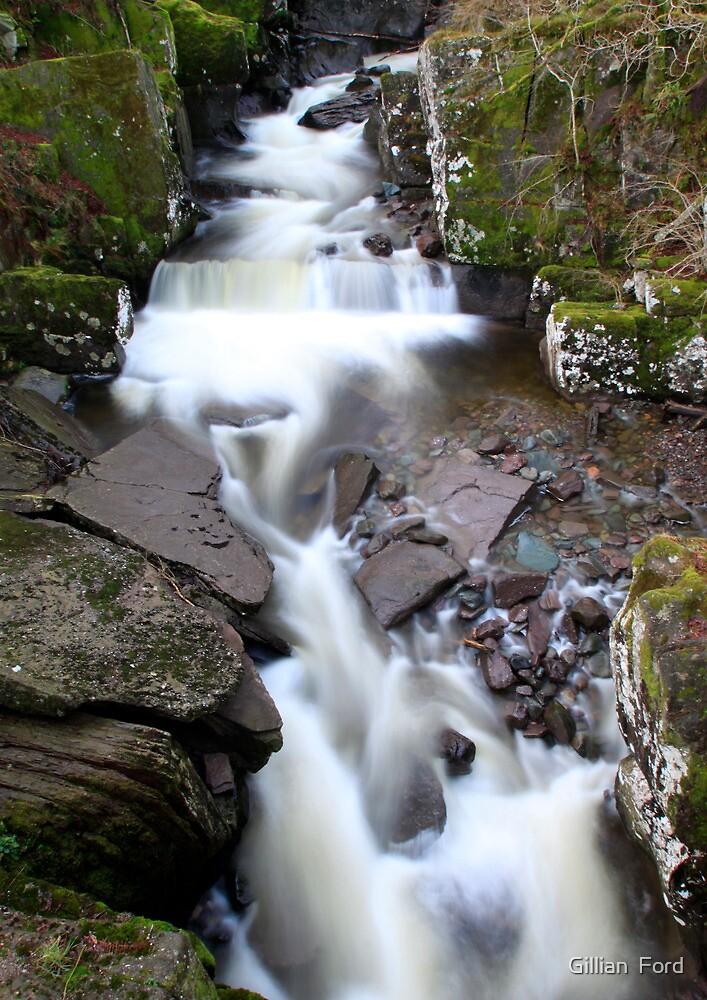 Bracklin Falls by Gillian  Ford