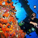 Working under the sea by Paul Lenharr II