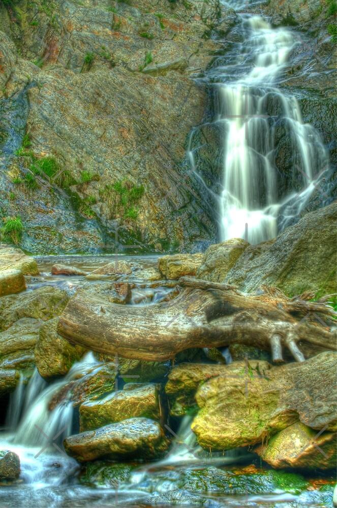 Waterfall - Cascade du Bayehon by vkirbys