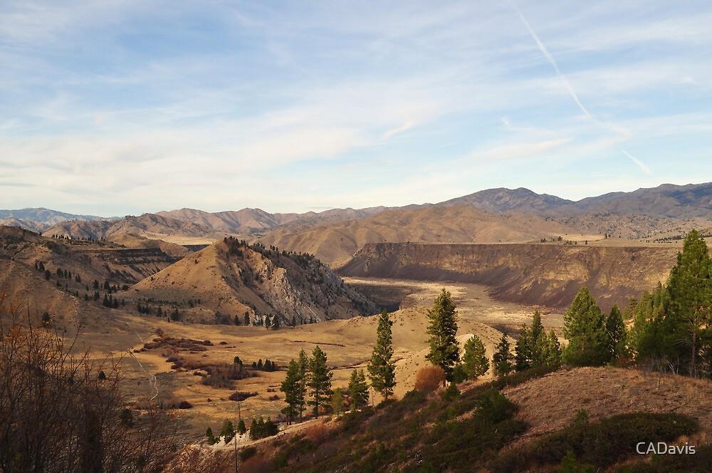 Autumn In Blacks Creek, ID by CADavis