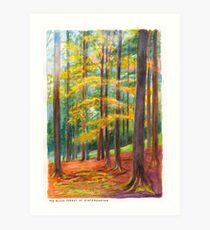 The Black Forest at Hinterzarten Art Print