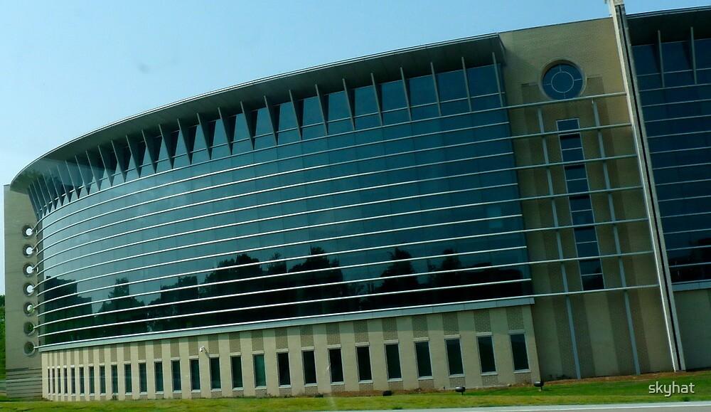 Buildings as Art by skyhat