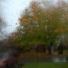 Sandy Outside My Door. by RockyWalley