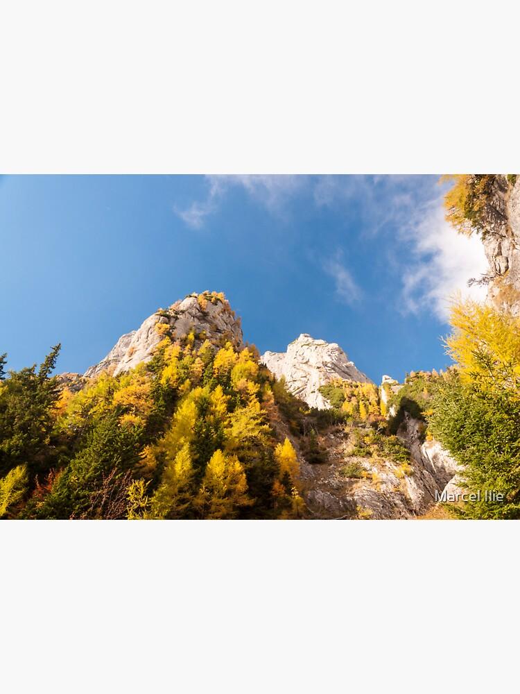 Autumn on the mountains by imaruseru