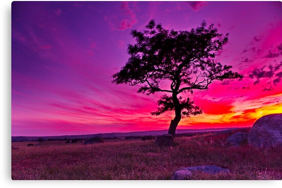 """Sunday's Sundown At The Rocks"" by Phil Thomson IPA"