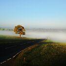 Mist by Eddie Nock