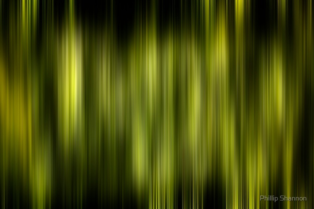 Green & black by Phillip Shannon