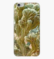 Cactus cover iPhone Case