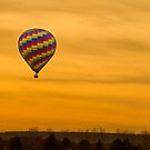 Hot Air Balloon Golden Sky by Bo Insogna