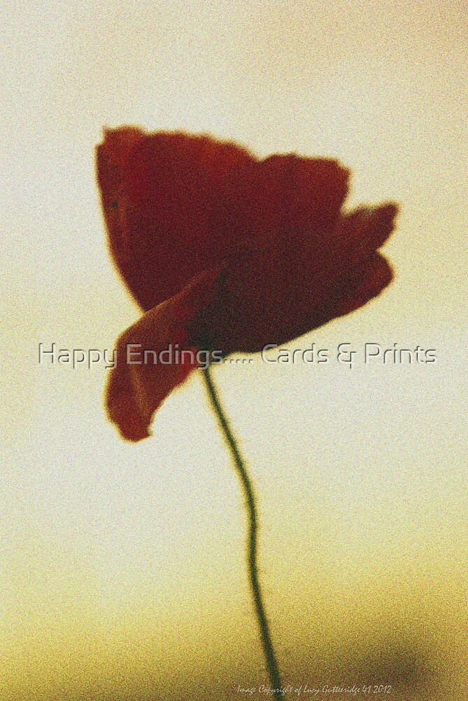 Poppy In the headlights by Happy Endings..... Cards & Prints