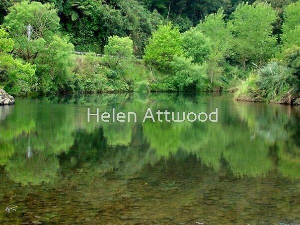 Reflection, Swingbridge, Coromandel Peninsula by Helen Attwood