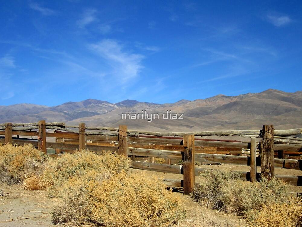 The West by marilyn diaz