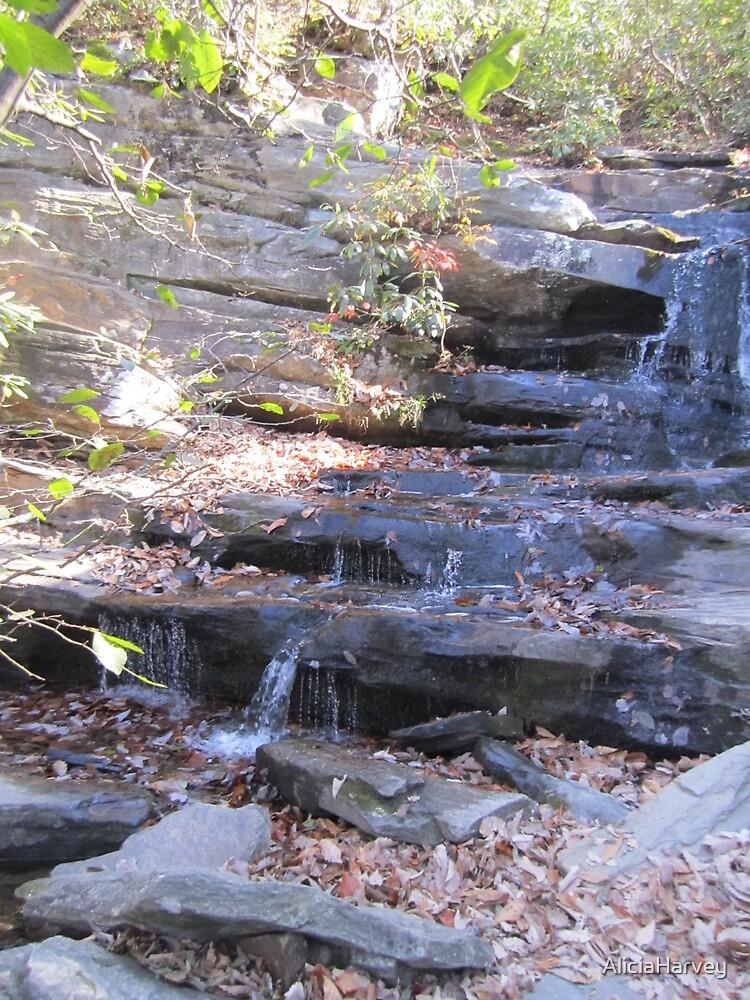 Waterfalls  by AliciaHarvey