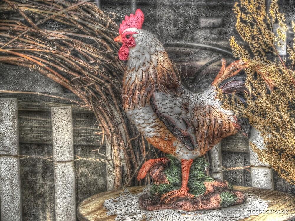Struttin' Around the Barnyard by wiscbackroadz