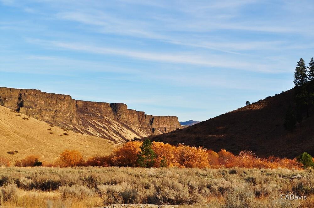 Plateau In Fall by CADavis