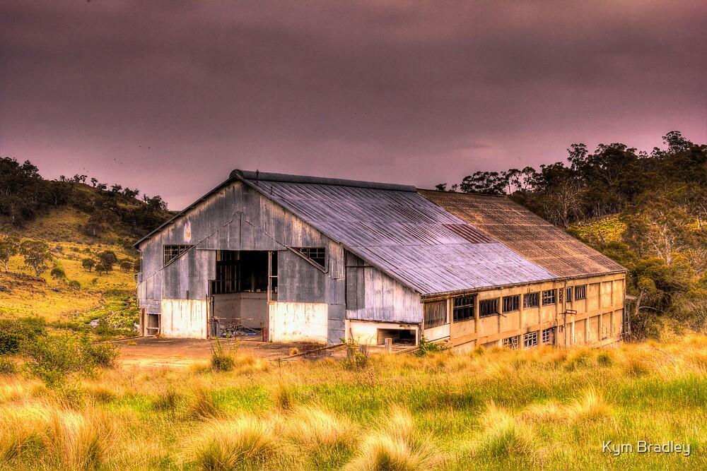 Maclaughlin Disused Abattoirs Bombala NSW no 2 by Kym Bradley