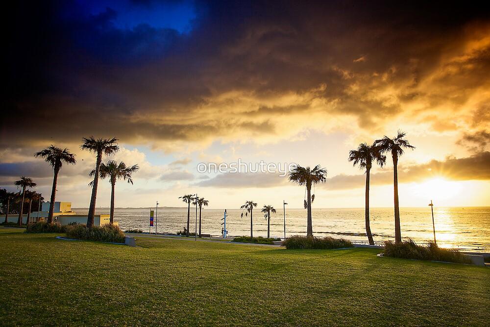 Palm Sunrise by oneshuteye